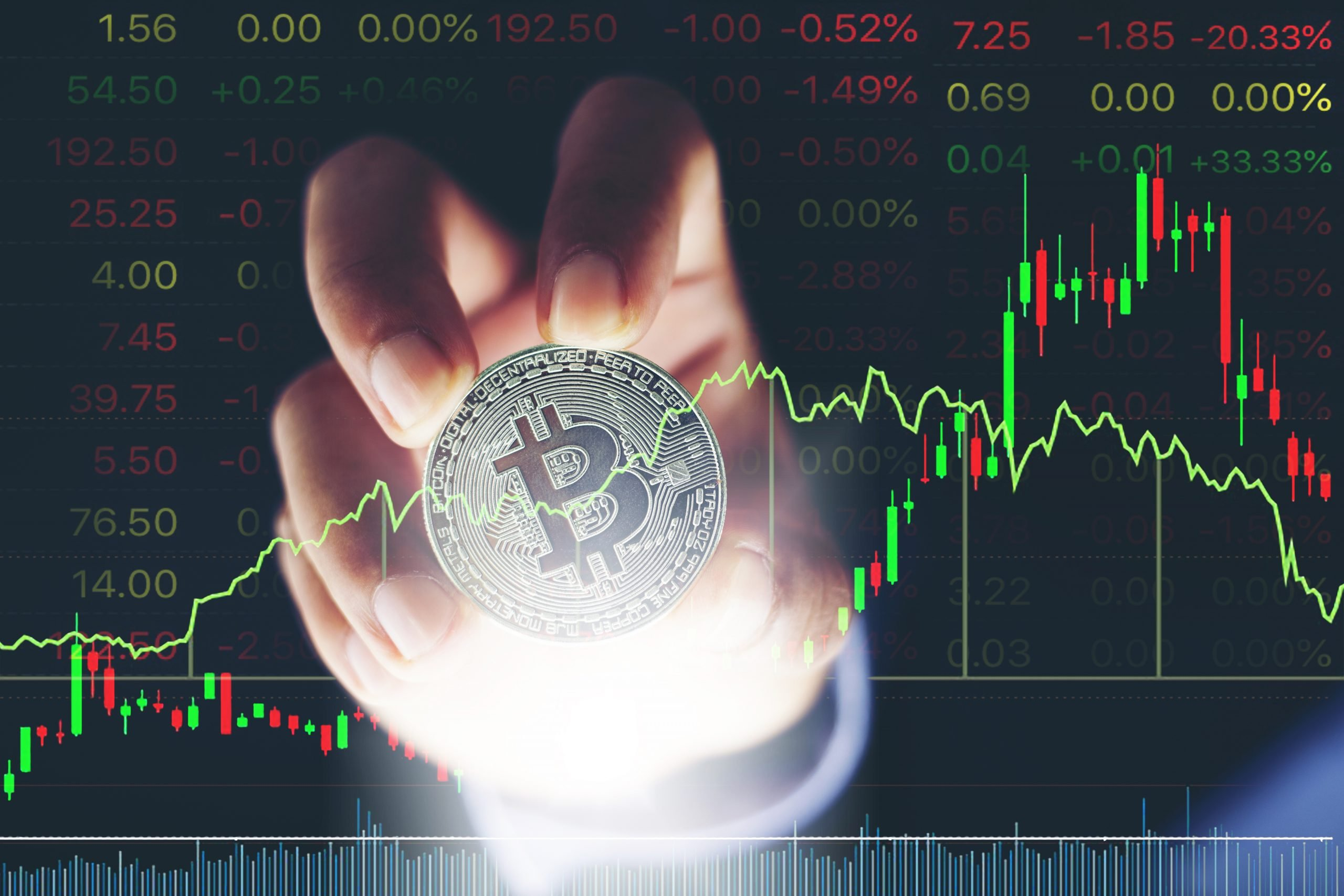AdobeStock 212243306 scaled Bitcoin Proves The Haters Wrong (Top Crypto Makes Millions for Hodlers)